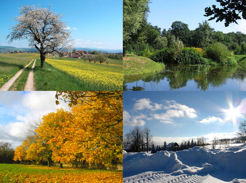 https://i2.wp.com/upload.wikimedia.org/wikipedia/commons/0/04/Four_seasons.jpg