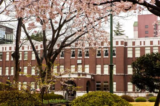 Seikei University (10)