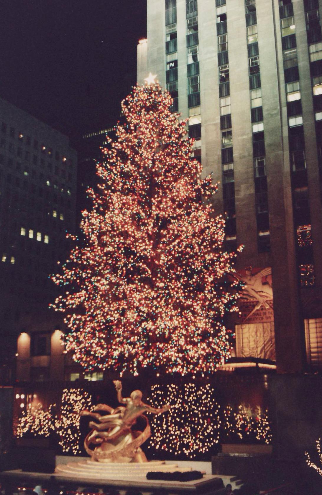 Rockefeller Center Tree.jpg