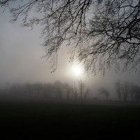 In a fog. . .