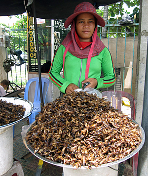 Insect merchant in Cambodia .