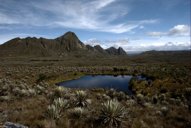 Páramo in Sumapaz, Colombia - rocky terrain with cacti and a lake in the middle, the sky is blue with some clouds.