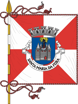 Flag of Santa Maria da Feira