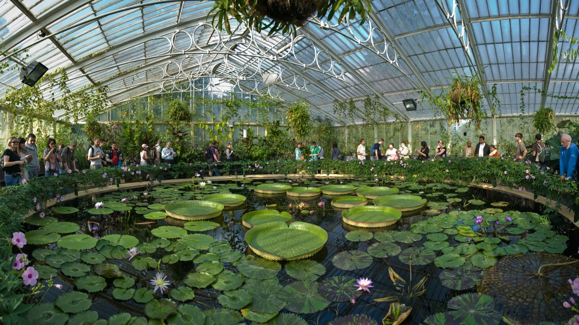 Image Result For Denver Botanic Gardens