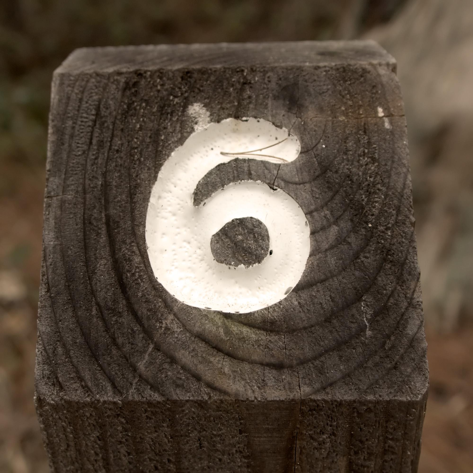 https://i2.wp.com/upload.wikimedia.org/wikipedia/commons/1/14/Nature%27s_Number_6.jpg