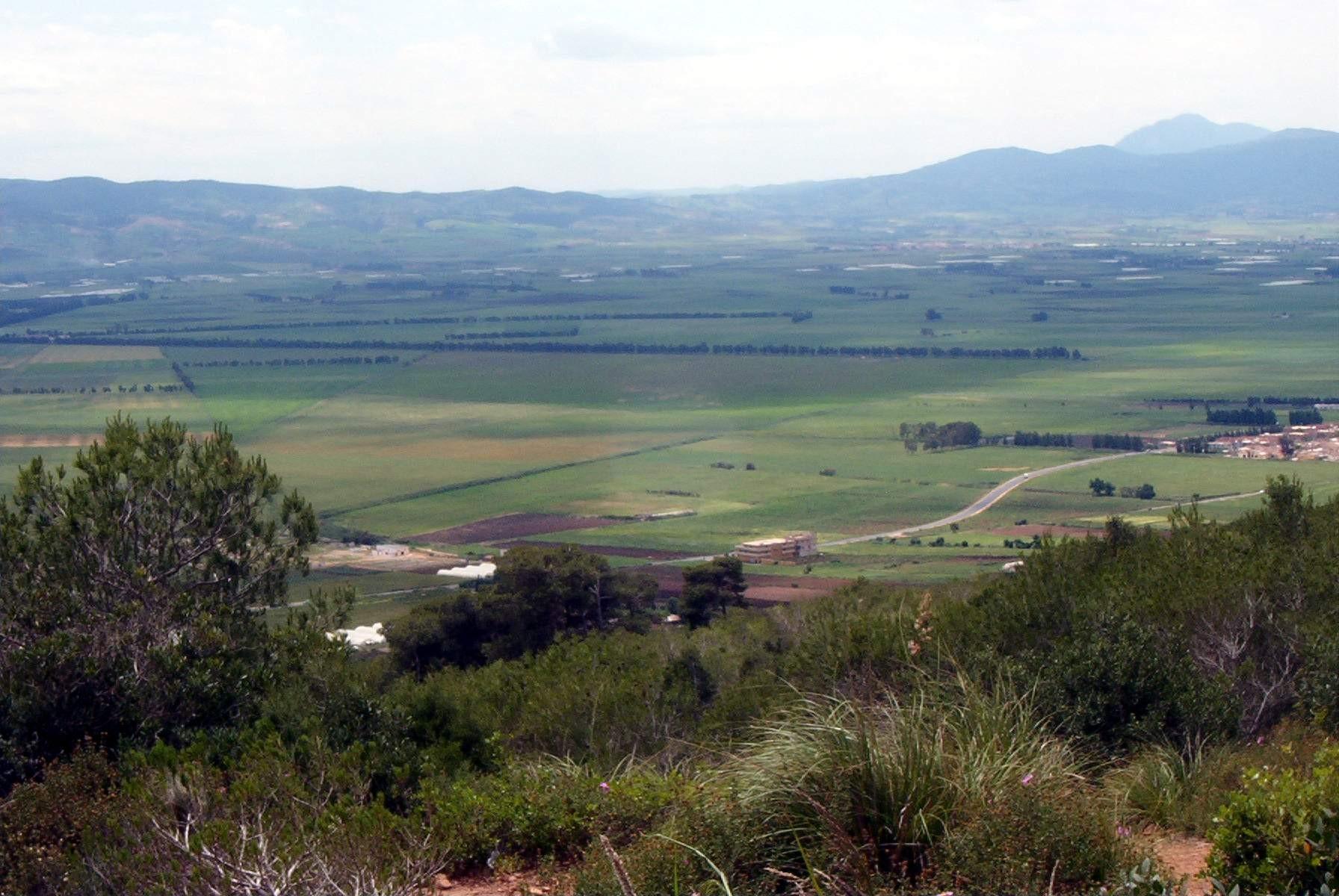 La mitidja dans la région d'Alger dominé par les Banu Thaaliba Banu Makil