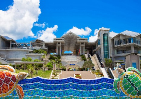 「沖縄美ら海水族館」の画像検索結果