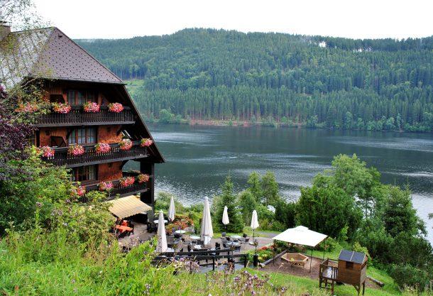 Image result for Black Forest of Germany