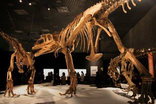 Mapusaurus.jpg