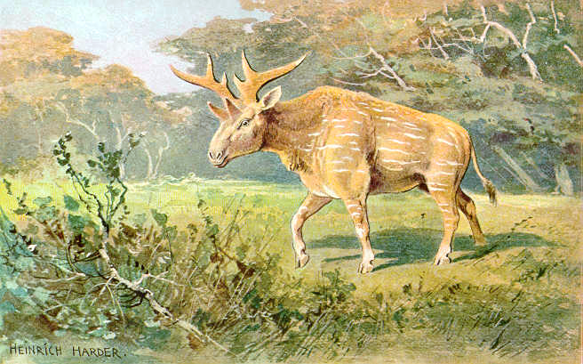 Sivatherium in all its moose-like glory.