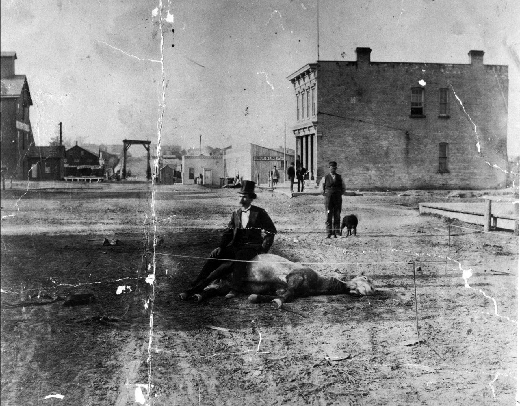 File:Man sitting on a dead horse (1876 - 1884).jpg
