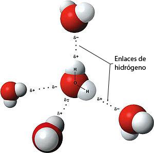 File:Moleculah20.jpg