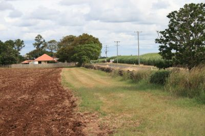 Sunnyside Sugar Plantation - Wikipedia