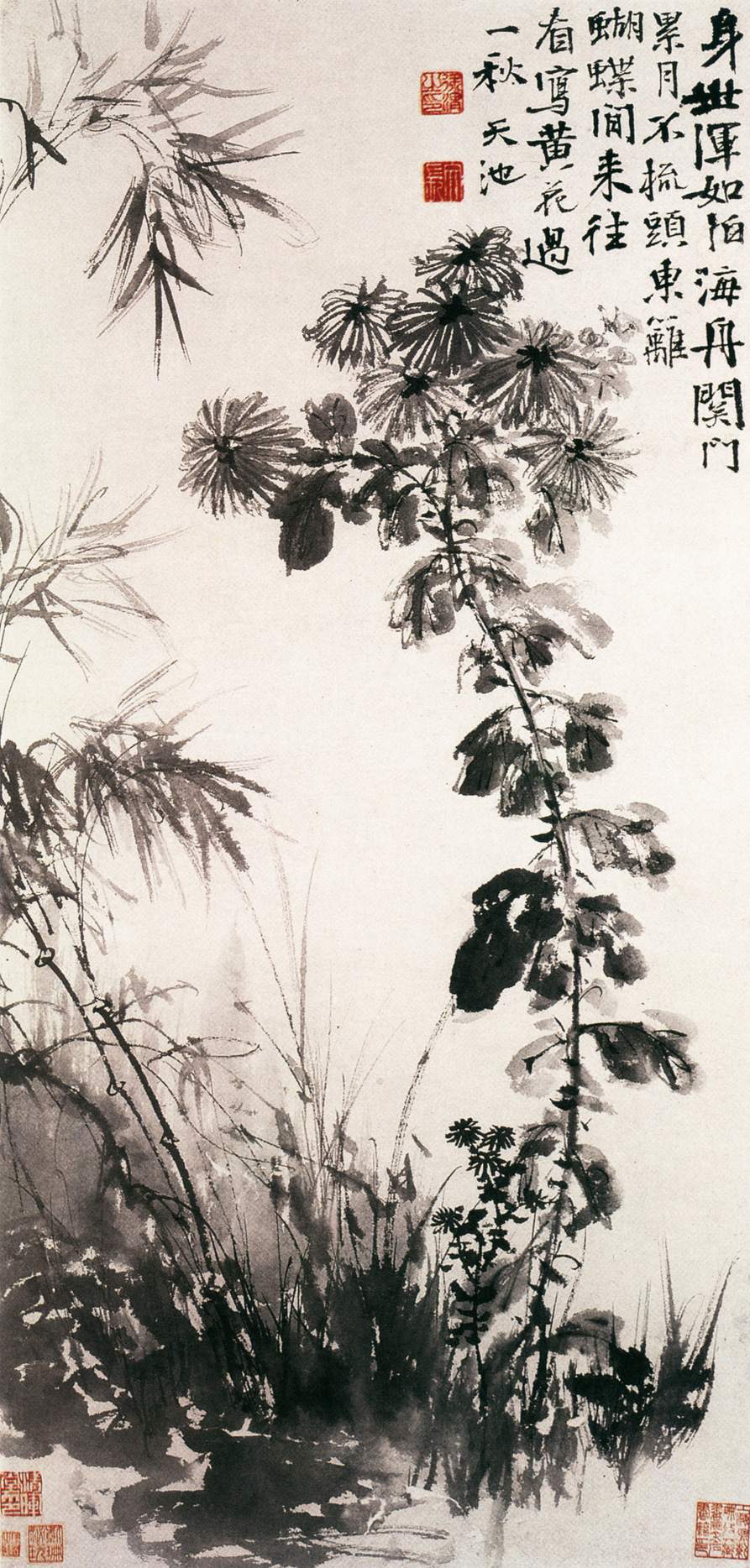 Chrysanthemums_and_Bamboos_by_Xu_Wei.jpg