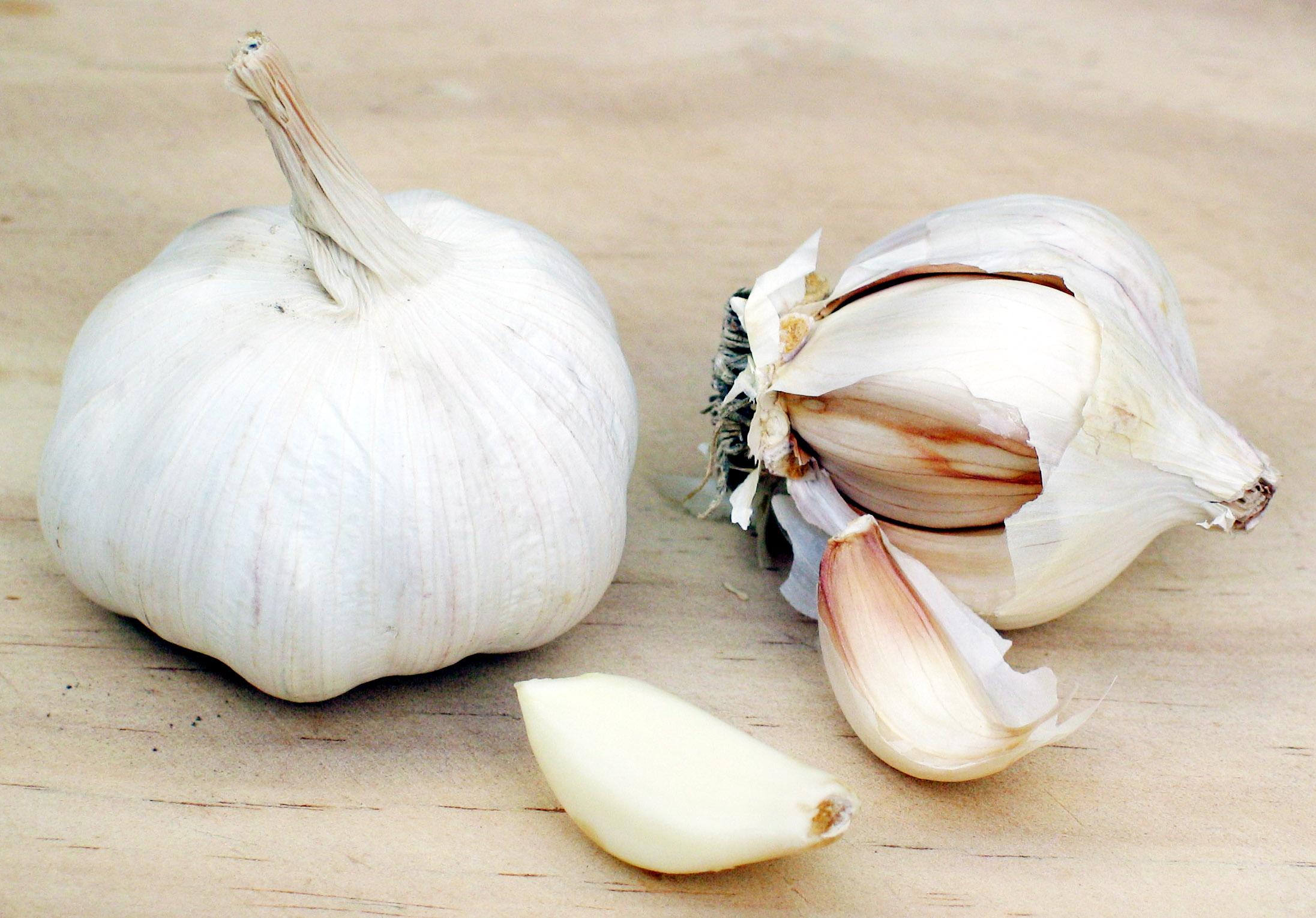 Description Garlic.jpg