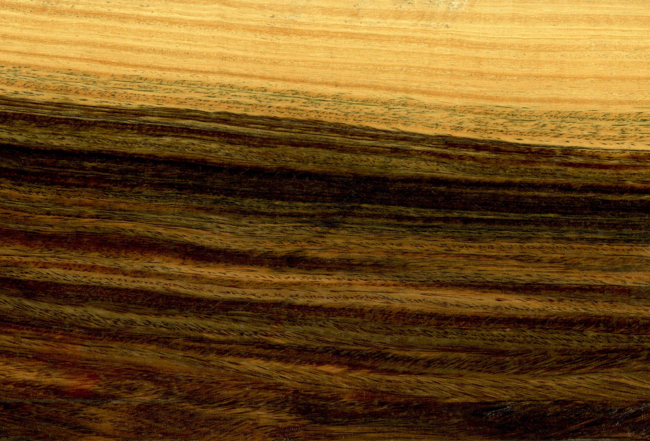 BulnesiaSarmientoi wood.jpg