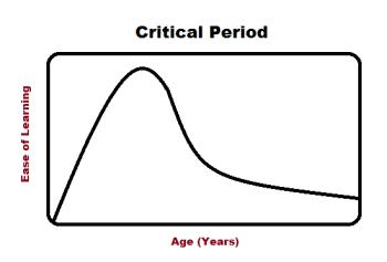 Critical Period