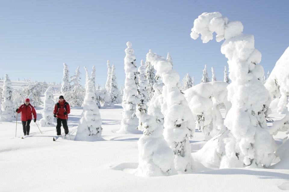 https://i2.wp.com/upload.wikimedia.org/wikipedia/commons/2/23/Skiing_at_Riisitunturi_National_Park.JPG?resize=960%2C640&ssl=1