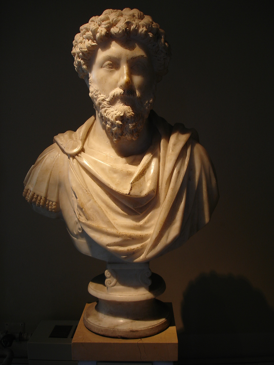 Bust of Marcus Aurelius in the Istanbul Archaeological Museum (Photograph G. Dall'Orto)