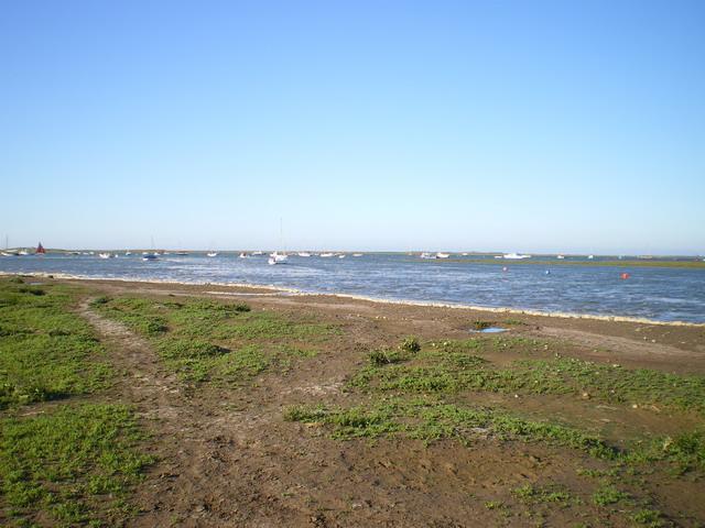 English: Northern edge of Morston Salt Marsh L...