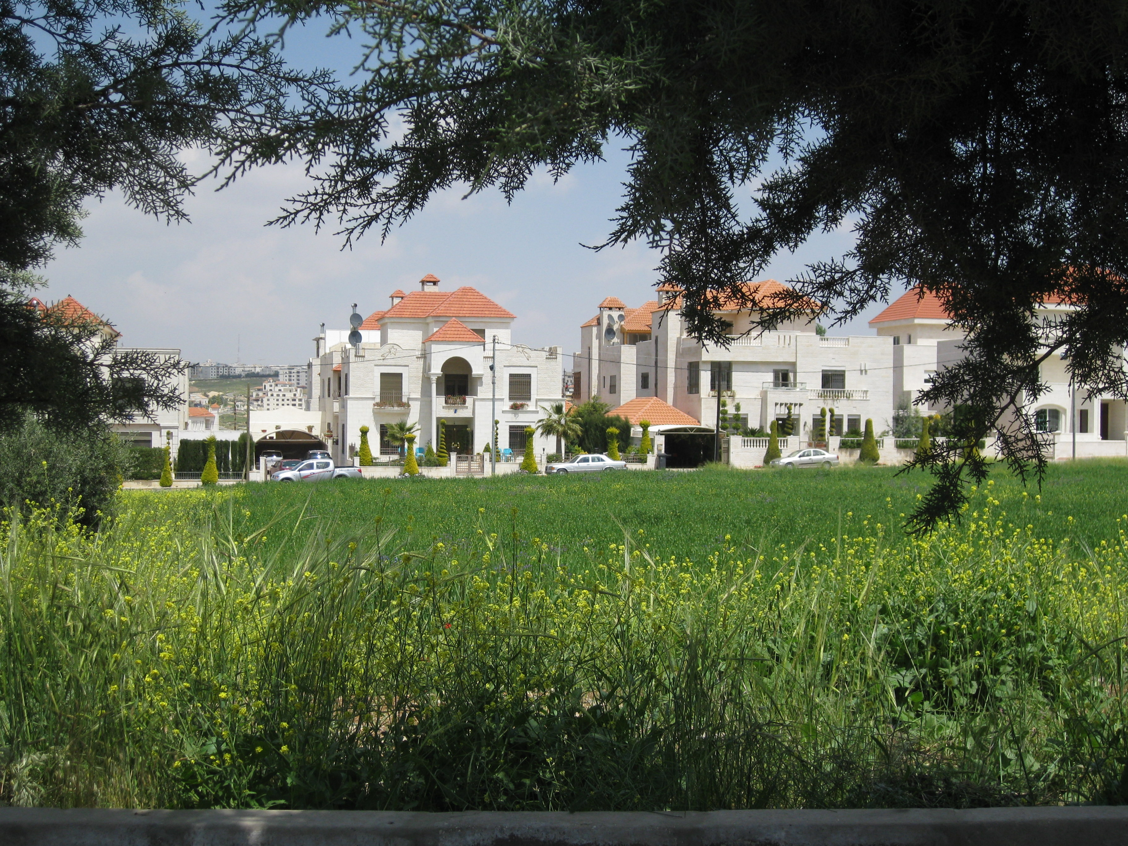 Spring in Amman