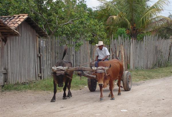 File:Talanga road Honduras.jpg