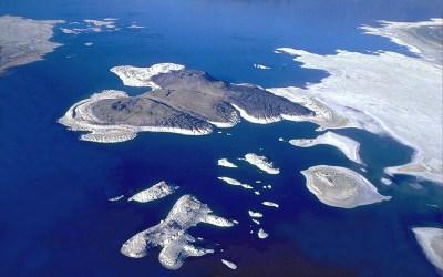 Negit Island - Wikipedia