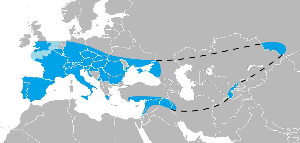 File:Range of Homo neanderthalensis.png