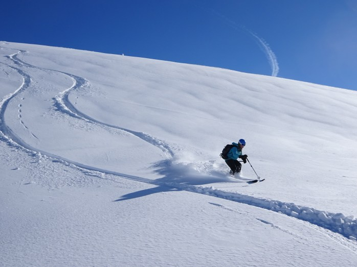 Image result for powder skiing