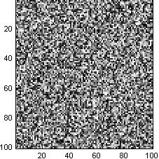 White noise image