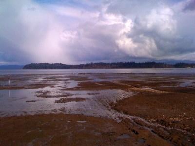 Willapa National Wildlife Refuge - Wikipedia