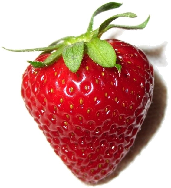 https://i2.wp.com/upload.wikimedia.org/wikipedia/commons/2/29/PerfectStrawberry.jpg