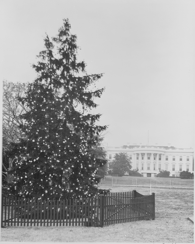 Christmas Tree | Tim Latimer - Quilts etc