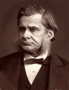 https://i2.wp.com/upload.wikimedia.org/wikipedia/commons/2/2e/T.H.Huxley(Woodburytype).jpg
