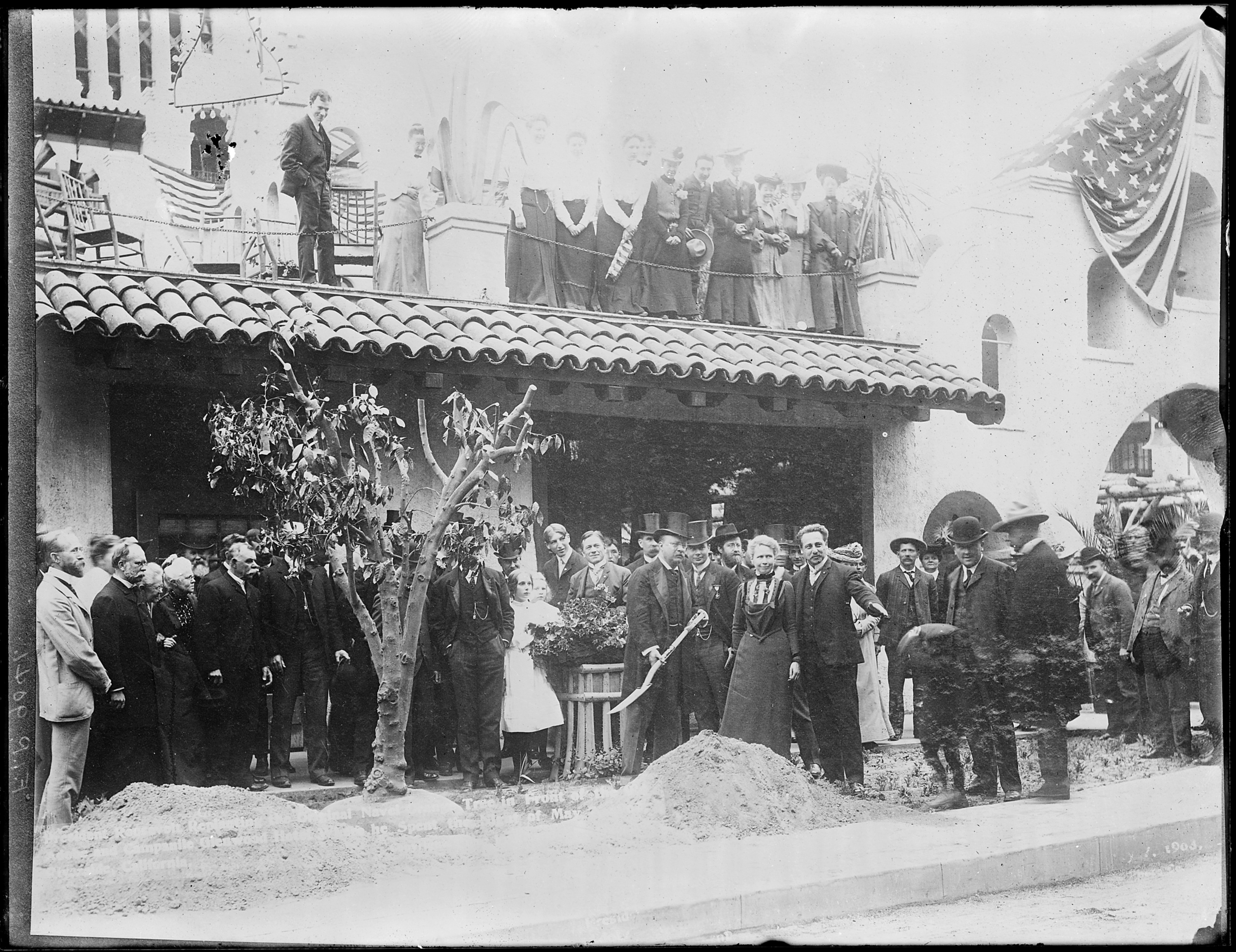 Fichier President Theodore Roosevelt Replanting A Bahia
