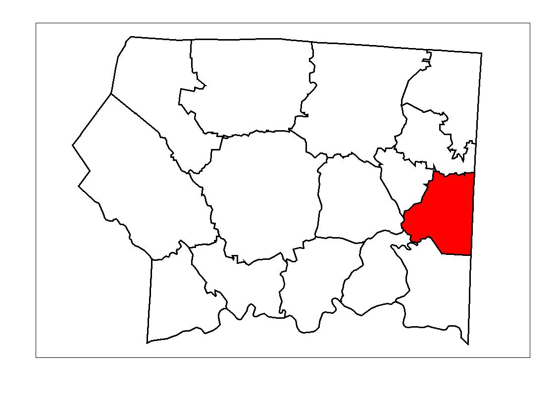 Pilot Township