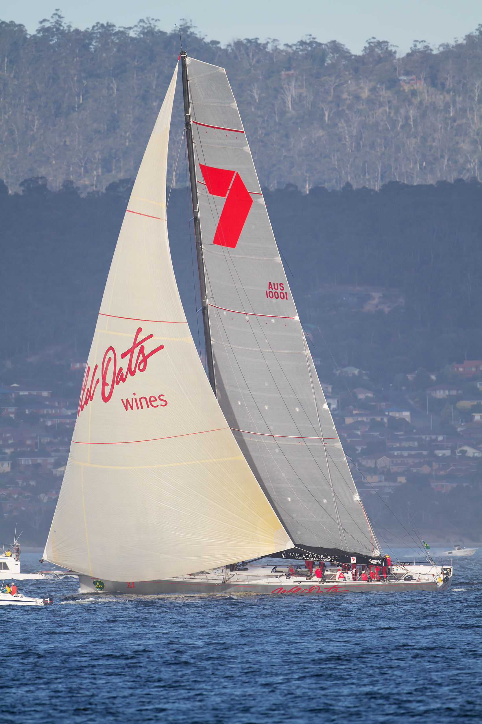 Wild Oats XI Wikipedia