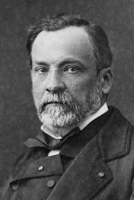 Louis Pasteur (1822-1895), Albumen silver prin...