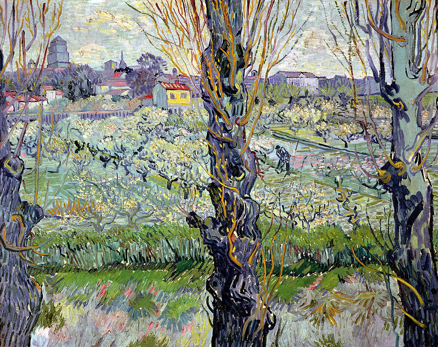 View Of Arles Flowering Orchards Wikidata