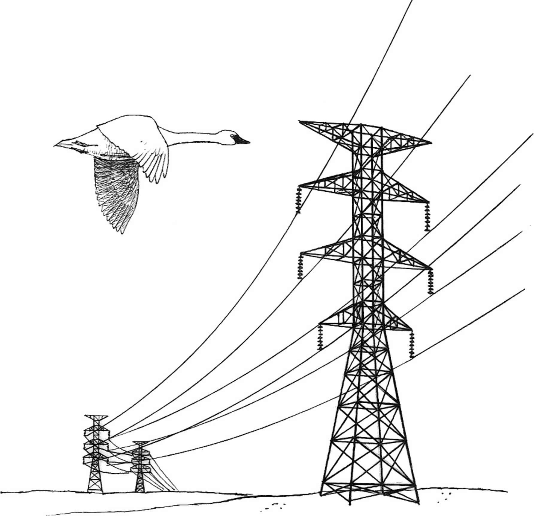 File Power Lines Hazard Illustration