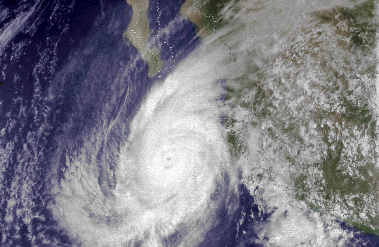 http://upload.wikimedia.org/wikipedia/commons/3/39/Hurricane_Liza_(1976)_Colored.jpg