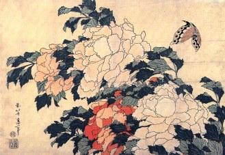 """Résultat de recherche d'images pour """"pivoine japon"""""""