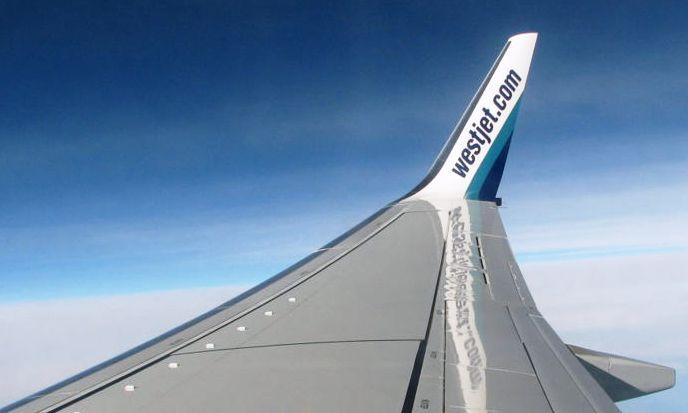 """Blended winglet"" de un B-737"