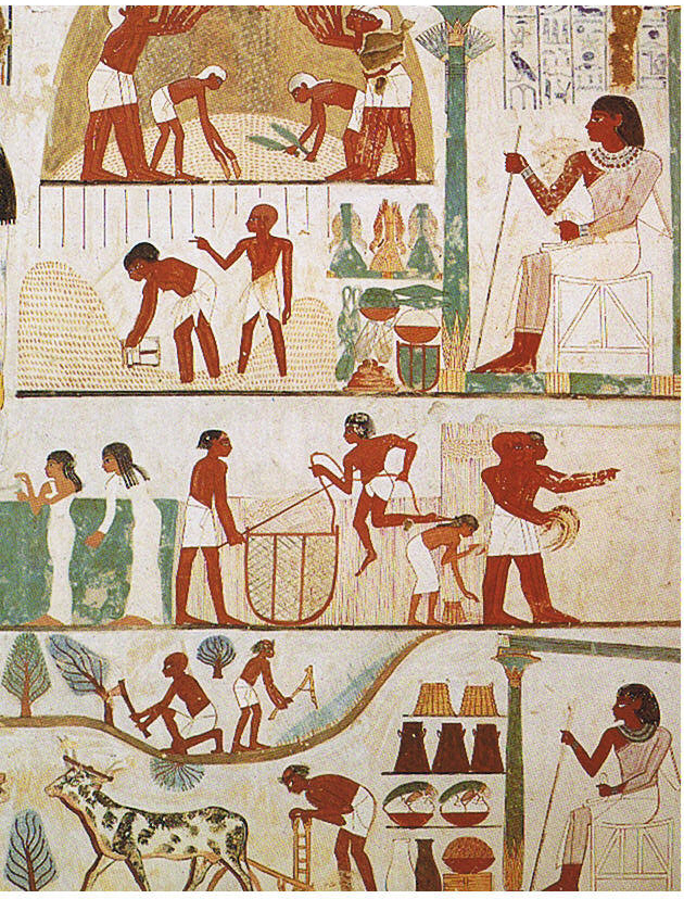 Agricultural scene from the tomb of Nakht, 18th Dynasty Thebes.