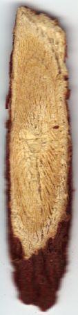 Sliver of liquorice root