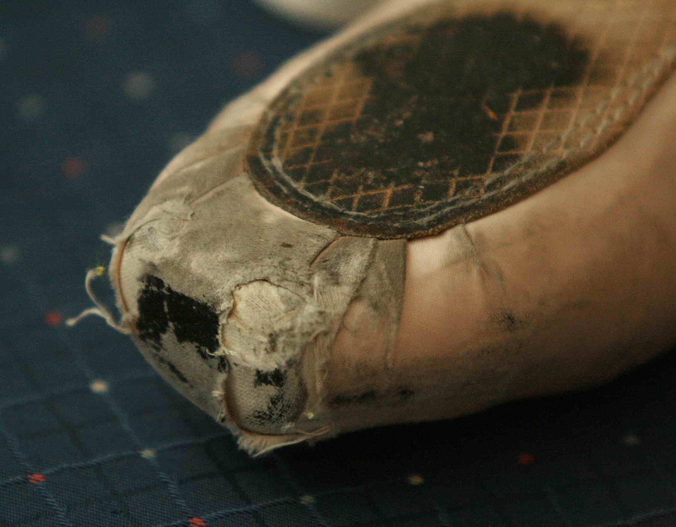 File Pointe Shoe Wear
