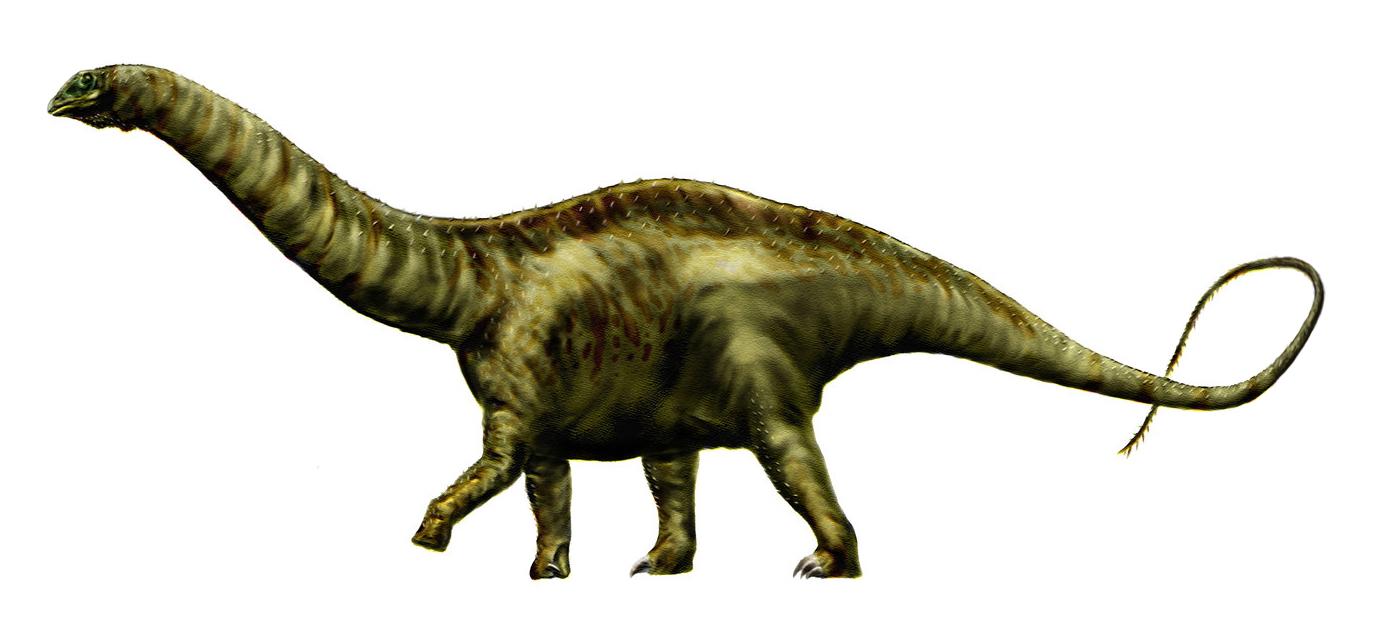 https://i2.wp.com/upload.wikimedia.org/wikipedia/commons/4/44/Apatosaurus_louisae_by_durbed.jpg