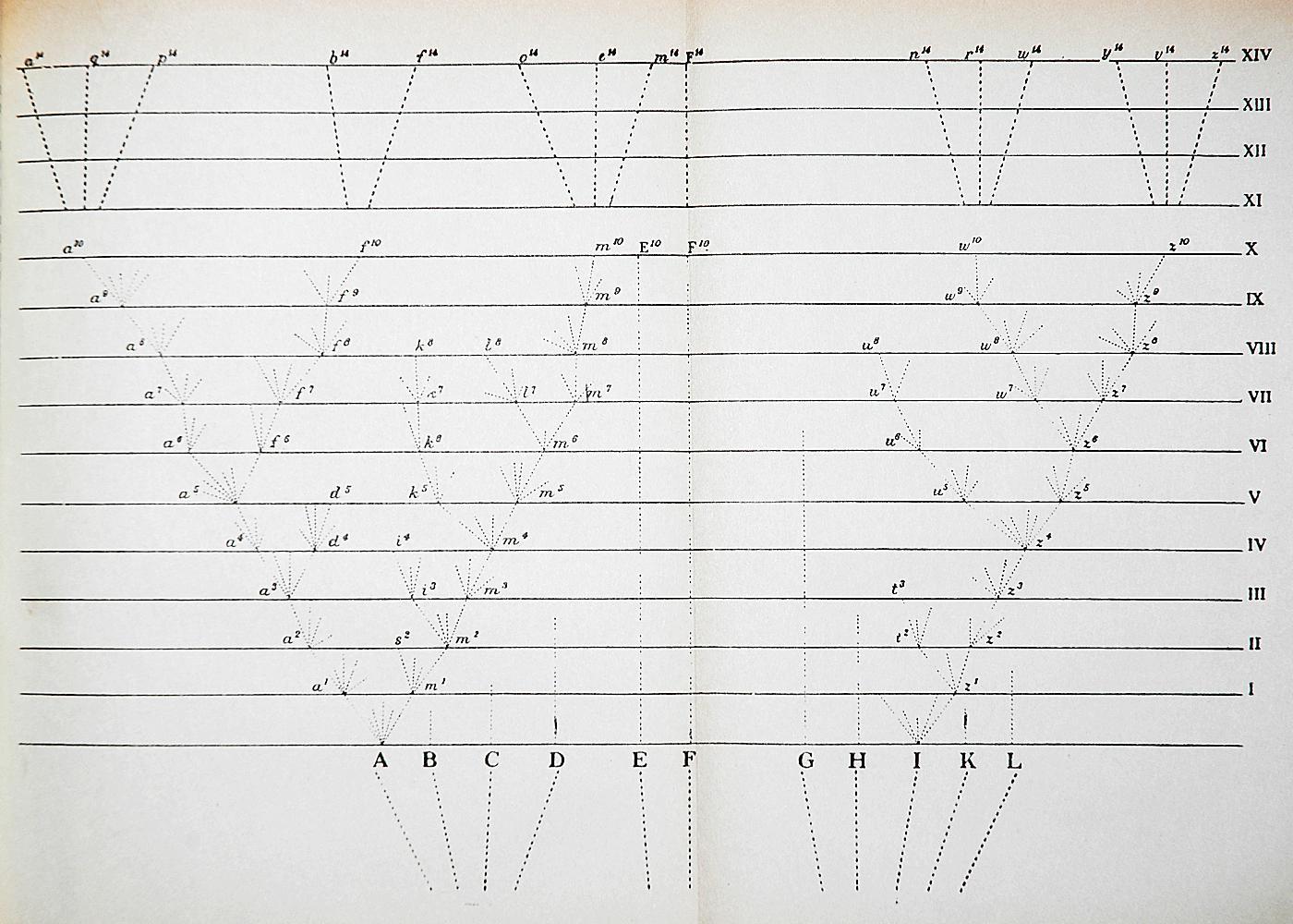 File Darwin Divergence