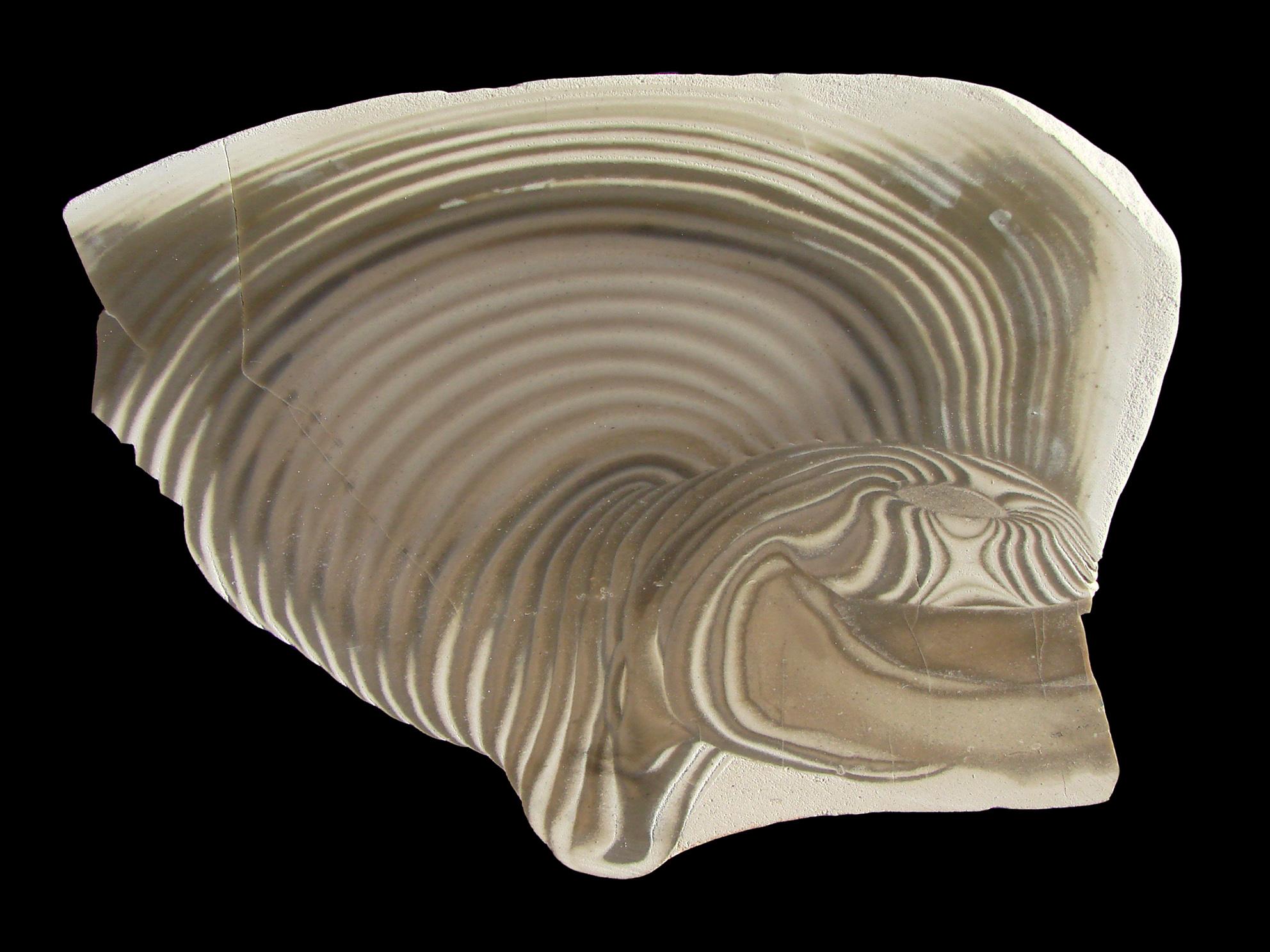 Silex rubanné. Par Vassil. Domaine public. Source : Wikimédia Commons