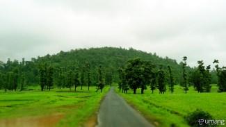 Way to mountain, vaghvad, near wilson hills